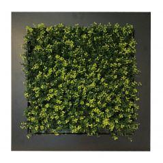 Pflanzenbild Buxus(künstliche Hecke) 67x67 cm