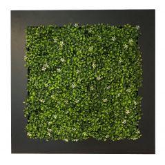 Pflanzenbild  Jasmine (künstliche Hecke) 67x67 cm