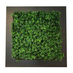 Pflanzenbild Hedera (künstliche Hecke) 67x67 cm