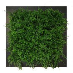 Pflanzenbild Farne (künstliche Hecke) 67x67 cm