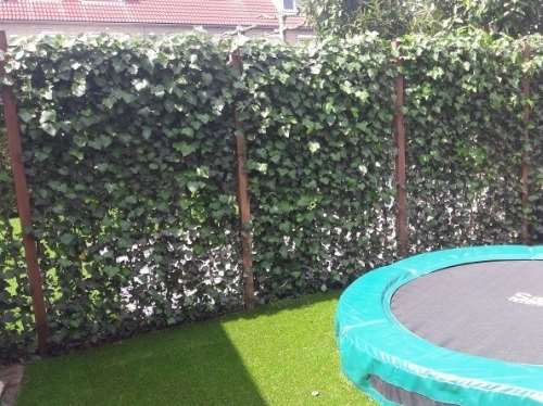 Fertighecke® Hedera Helix Green Ripple 120 x 180 cm (B x H)
